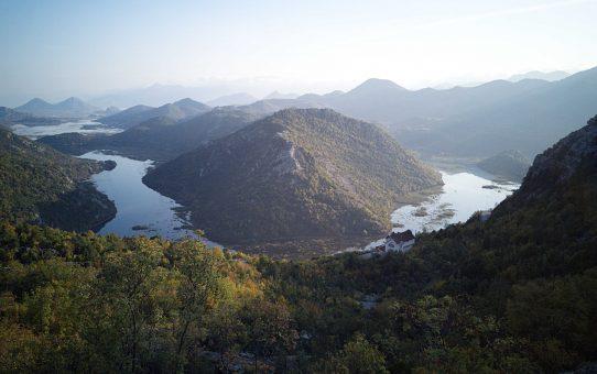 Le lac de Skadar